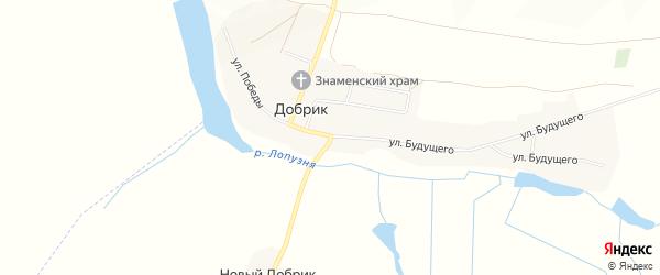 Карта села Добрика в Брянской области с улицами и номерами домов