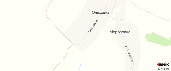 Садовая улица на карте деревни Ольховки с номерами домов