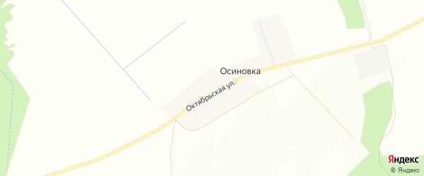 Карта деревни Осиновки в Брянской области с улицами и номерами домов