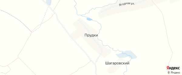 Карта села Прудки в Брянской области с улицами и номерами домов