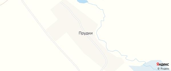Болотная улица на карте села Прудки с номерами домов