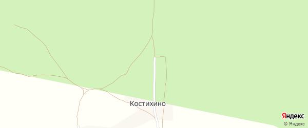 Лесная улица на карте деревни Костихино с номерами домов