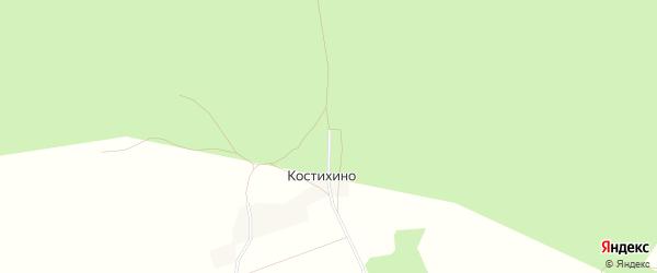 Карта деревни Костихино в Брянской области с улицами и номерами домов