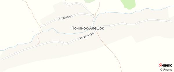 Ягодная улица на карте деревни Починка-Алешка с номерами домов