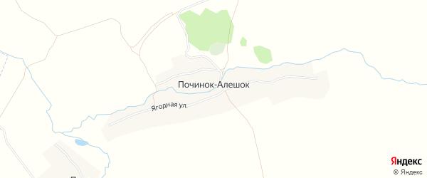 Карта деревни Починка-Алешка в Брянской области с улицами и номерами домов