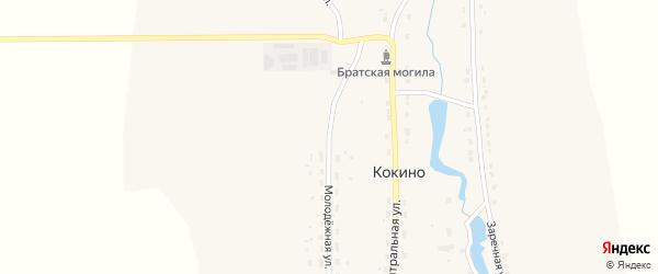Молодежная улица на карте деревни Кокино с номерами домов