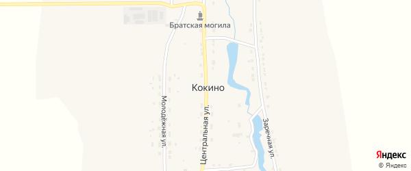 Центральная улица на карте деревни Кокино с номерами домов