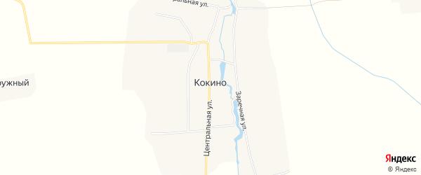 Карта деревни Кокино в Брянской области с улицами и номерами домов