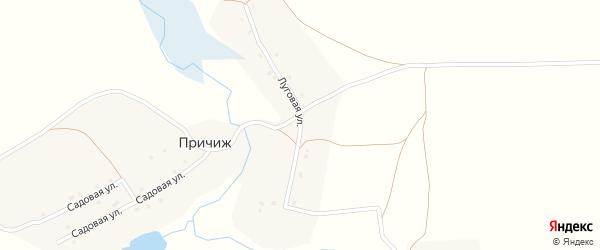Луговая улица на карте деревни Причижа с номерами домов