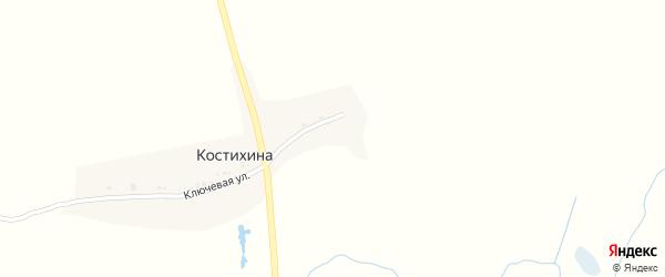 Ключевая улица на карте деревни Костихиной с номерами домов