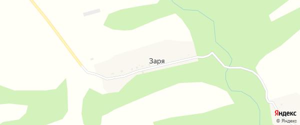 Лесная улица на карте поселка Зари с номерами домов