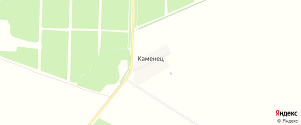 Карта поселка Каменца в Брянской области с улицами и номерами домов