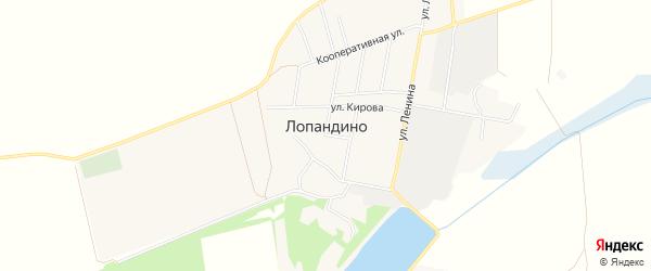 Карта поселка Лопандино в Брянской области с улицами и номерами домов