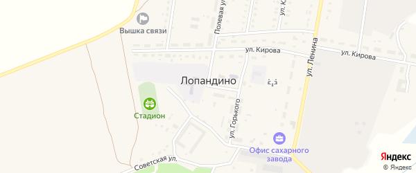 Кирпичная улица на карте поселка Лопандино с номерами домов