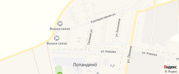 Полевая улица на карте поселка Лопандино с номерами домов