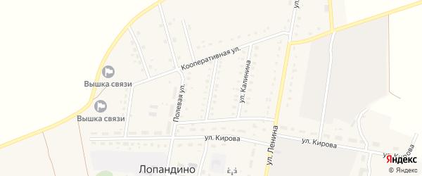 Октябрьская улица на карте поселка Лопандино с номерами домов