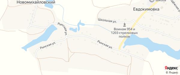 Рынская улица на карте села Евдокимовки с номерами домов