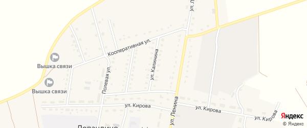 Улица Калинина на карте поселка Лопандино с номерами домов