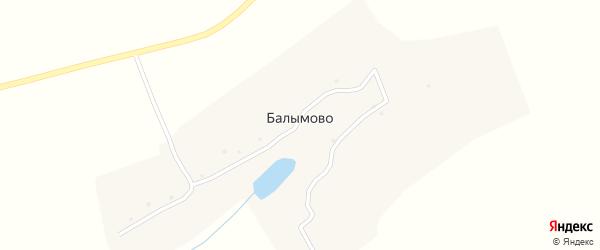 Луговая улица на карте деревни Балымово с номерами домов