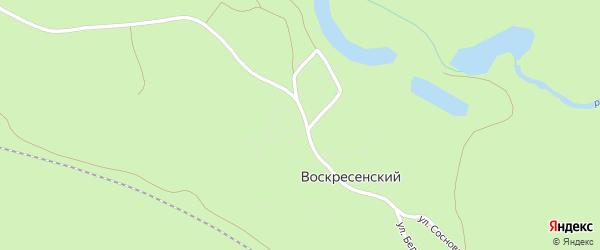 Улица Сосновый бор на карте Воскресенского поселка с номерами домов
