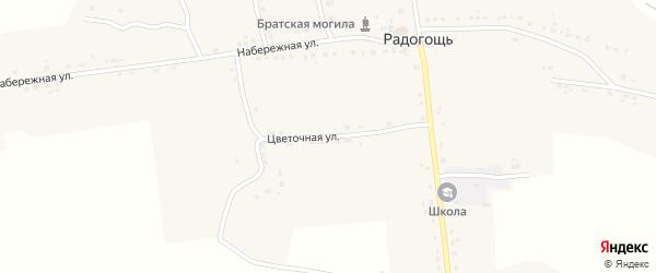 Цветочная улица на карте села Радогощи с номерами домов