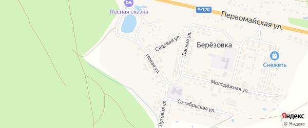 Новая улица на карте поселка Березовки с номерами домов