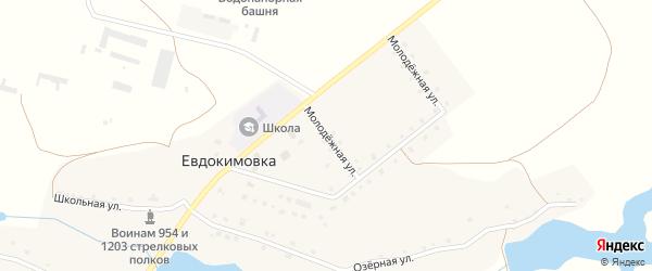 Молодежная улица на карте села Евдокимовки с номерами домов