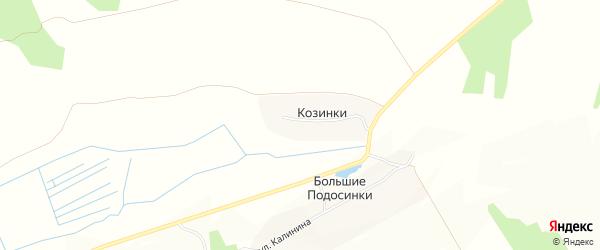 Карта деревни Козинки в Брянской области с улицами и номерами домов