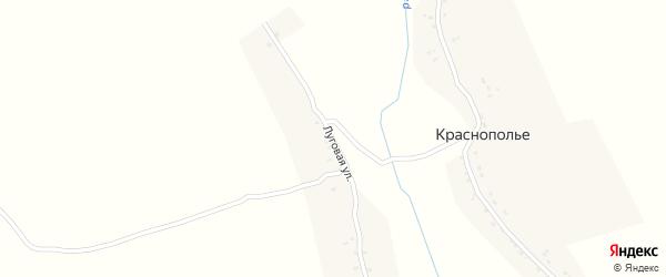 Луговая улица на карте деревни Краснополья с номерами домов