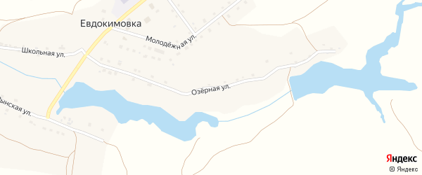 Озерная улица на карте села Евдокимовки с номерами домов