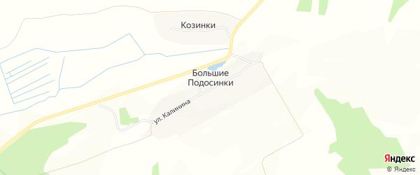 Карта деревни Большие Подосинки в Брянской области с улицами и номерами домов