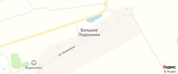 Улица Калинина на карте деревни Большие Подосинки с номерами домов