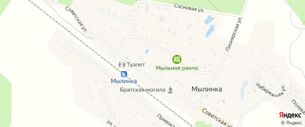 Брянская улица на карте деревни Мылинки с номерами домов