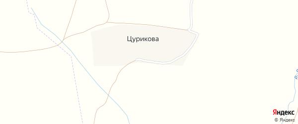 Ключевая улица на карте деревни Цурикова с номерами домов