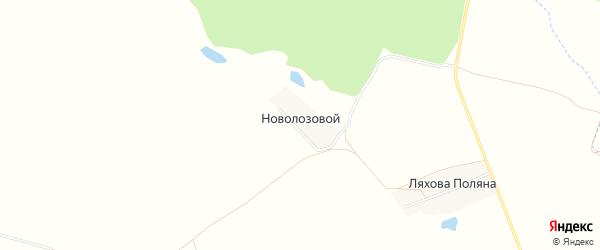 Карта Новолозового поселка в Брянской области с улицами и номерами домов