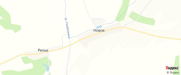 Карта деревни Нового в Брянской области с улицами и номерами домов