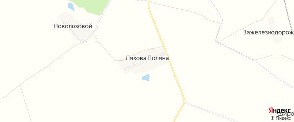 Карта поселка Ляхова Поляна в Брянской области с улицами и номерами домов