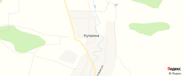Карта деревни Куприной в Брянской области с улицами и номерами домов