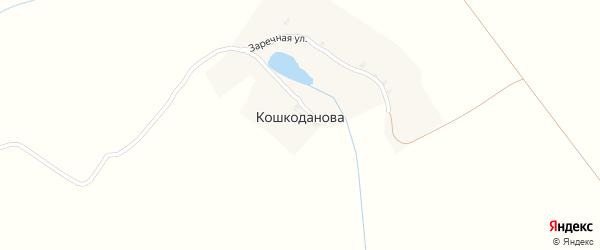Заречная улица на карте деревни Кошкоданова с номерами домов