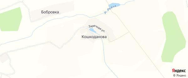 Карта деревни Кошкоданова в Брянской области с улицами и номерами домов