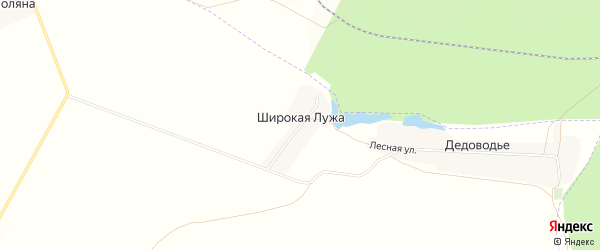 Карта поселка Широкой Лужи в Брянской области с улицами и номерами домов