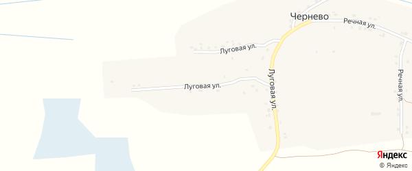 Луговая улица на карте деревни Чернево с номерами домов