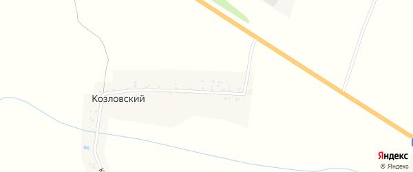 Курганская улица на карте Козловского поселка с номерами домов