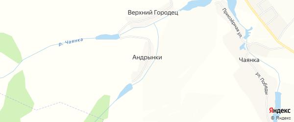 Карта деревни Андрынки в Брянской области с улицами и номерами домов