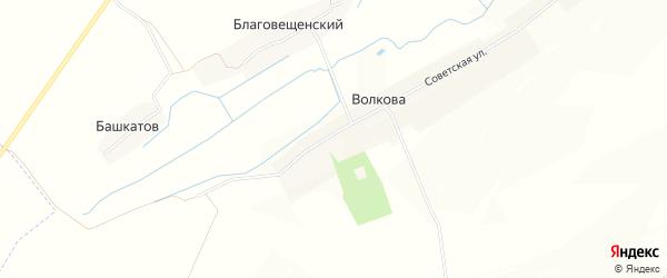 Карта деревни Волкова в Брянской области с улицами и номерами домов