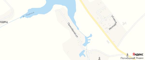 Приозерная улица на карте села Чаянки с номерами домов