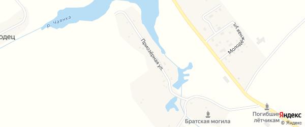 Улица Победы на карте села Чаянки с номерами домов