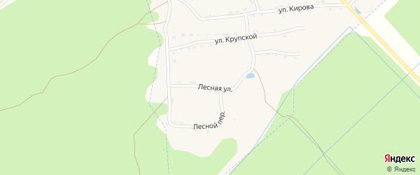 Лесная улица на карте поселка Пальца с номерами домов