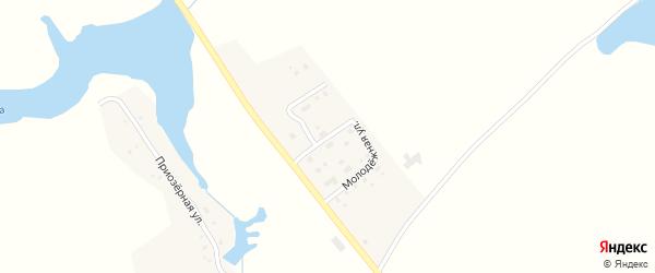 Молодежная улица на карте села Чаянки с номерами домов
