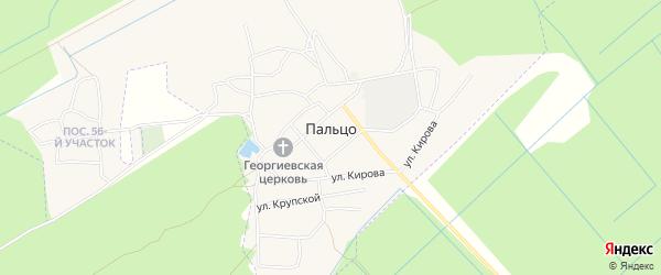 Карта поселка Пальца в Брянской области с улицами и номерами домов